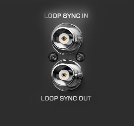 Loop Sync 1
