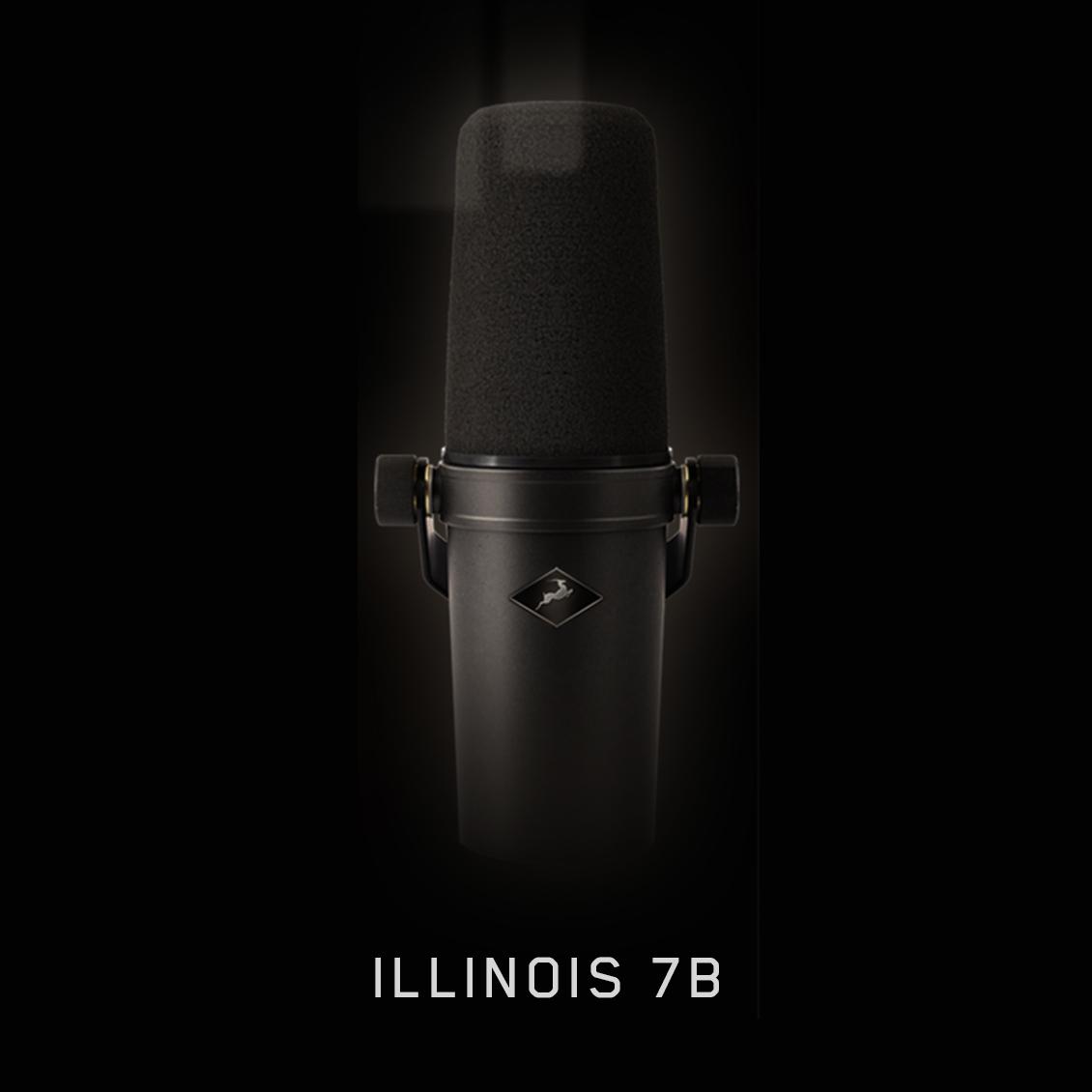 Illinois 7B 1